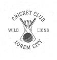 Retro cricket club logo icon design Vintage vector image