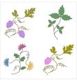Grapevine wine design elements a set vector image