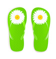 Flip Flops With Camomile vector image