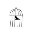 sparrow in a cage black vector image