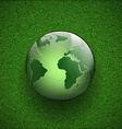 Planet earth on the grass vector image vector image