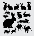 Cute rabbit pet action silhouettes vector image