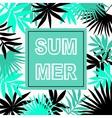 Summer hawaiian typographic flyer design vector image