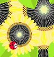 Big sunflowers and ladybug seamless background vector image