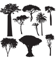 African tree silhouettes vector image