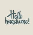 Hello Handsome vector image