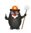 Merry mole is lucky vector image