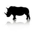 rhino animal vector image