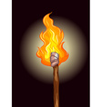 Fire on wooden stick vector image