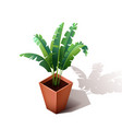 Isolated ceramic flowerpot with a grass isometric vector image