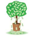 cash tree vector image