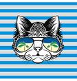 Design cat vector image