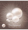 Luxurious pearl background vector image