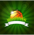 Basketball ball on field grass vector image