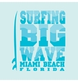surfing Miami Beach Florida vector image