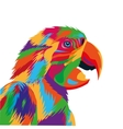 colorful parrot drawing icon vector image