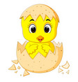 little cartoon chick hatched from an egg vector image