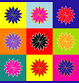 flower sign pop-art style colorful icons vector image