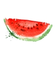 Watermelon logo design template vitamins vector image
