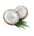 Polygonal coconut with leaf vector image