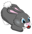 gray bunny vector image vector image