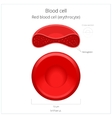 Red blood cell erythrocyte vector image