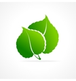 ecology concept of green leaf isolated icon vector image