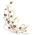 Grain flowers vector image