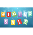 Caption Winter Sale on packages vector image vector image