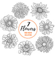 Hand drawn flowers collection vector image