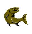 Muskie Muskellunge Fish Retro vector image