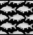 graphic carp pattern vector image