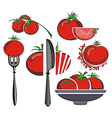 Tomatoes vector image