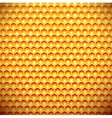 Honey comb vector image vector image