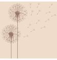 dandelion flight vector image vector image