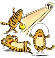 Cartoon of red cats vector image vector image