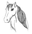 Hand drawn horse with long mane and bang vector image