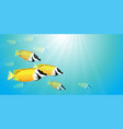 yellow fish in water vector image
