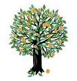Peach or Orange tree vector image