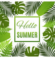 Tropical background with palms and ferns vector