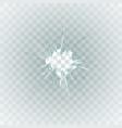 broken window hole transparent glass vector image vector image