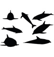 dolphin silhouette isolated vector image