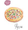 pizza watercolor vector image