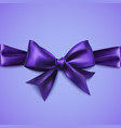 decorative bow with horizontal ribbon vector image