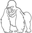 gorilla for coloring book vector image