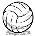 doodle volleyball vector image vector image