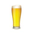 Glass of beer vector image vector image