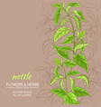 nettle background vector image