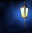 Old vintage street lamp in the dark vector image vector image