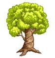 a closeup tree vector image vector image